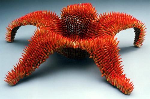 Pencil Starfish