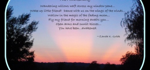 The Awakening poem by Sonny Carrol