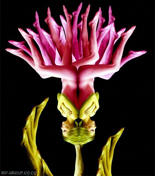 Human Blossom