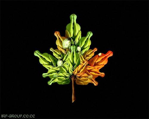 Naked Human Art - Human Leaf